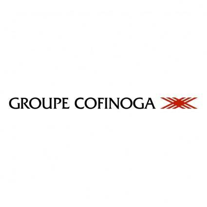 Cofinoga groupe