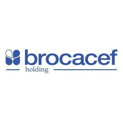 Brocacef holding