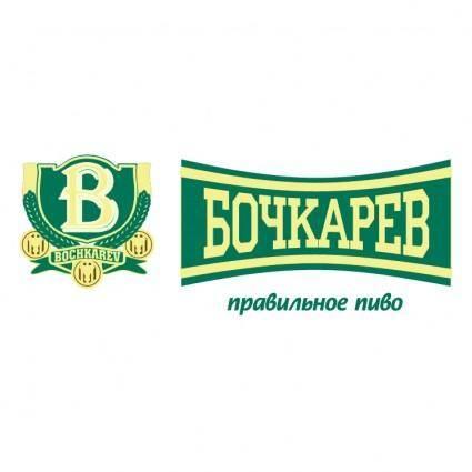 Bochkarev 1