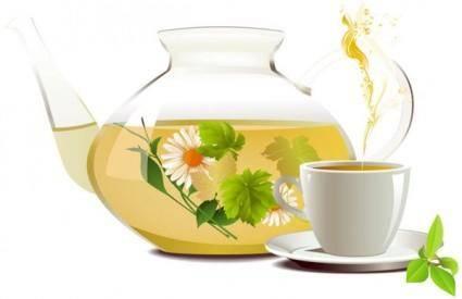 free vector Chrysanthemum tea tea 01 vector