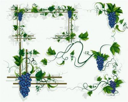 free vector Grapes vines grape leaf border vector
