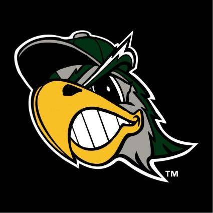 free vector South bend silver hawks 1
