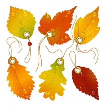 Vector beautiful maple leaf bookmark