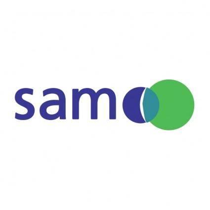 free vector Sam group