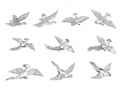 free vector Classic bird vector