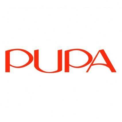 free vector Pupa