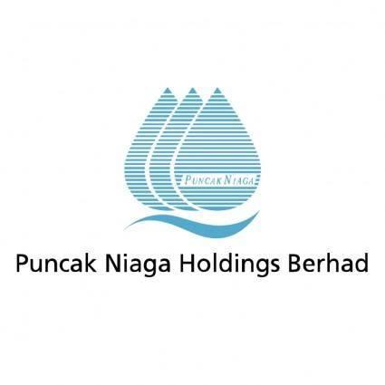 Puncak niaga holdings