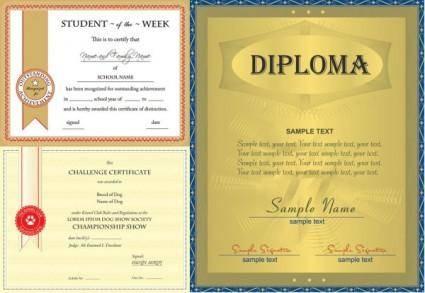 Three vector design certificate 6592