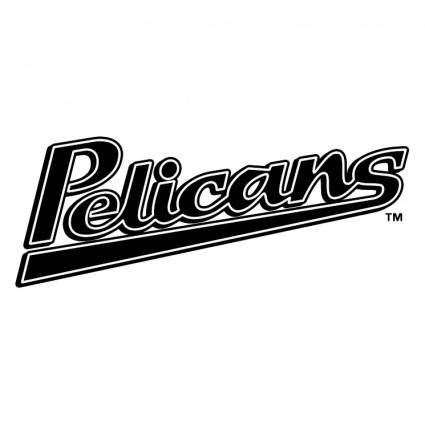 free vector Myrtle beach pelicans 0