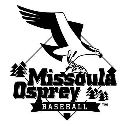 free vector Missoula osprey