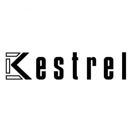 free vector Kestrel