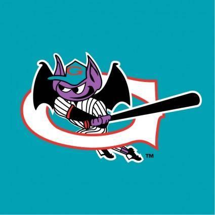 Greensboro bats 2