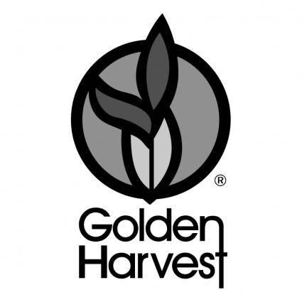 free vector Golden harvest