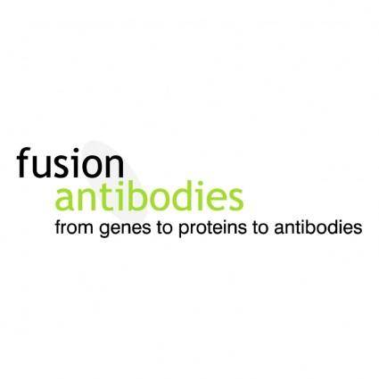 Fusion antibodies