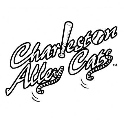 Charleston alley cats