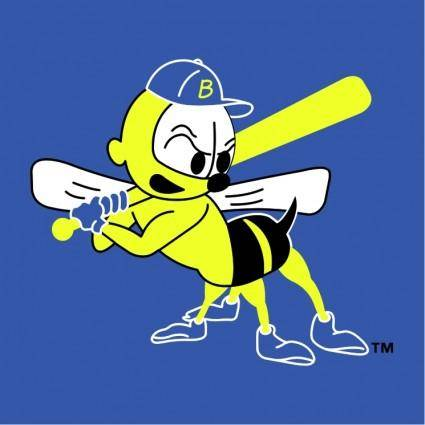 Burlington bees 1