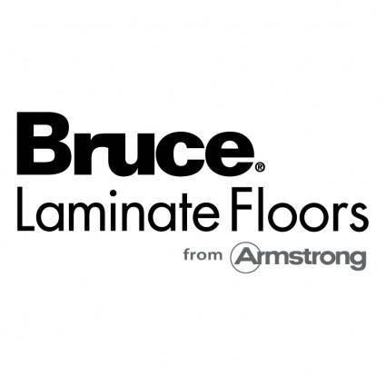 free vector Bruce 1