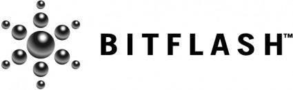 Bitflash 1