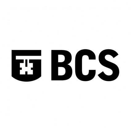 Bcd 2