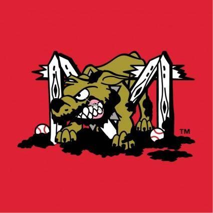 Batavia muckdogs 1