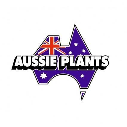 Aussie plants