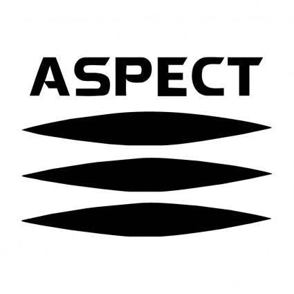 Aspect 1