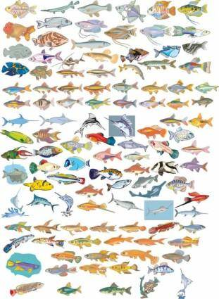 free vector Big Vector Collection of Different Fish