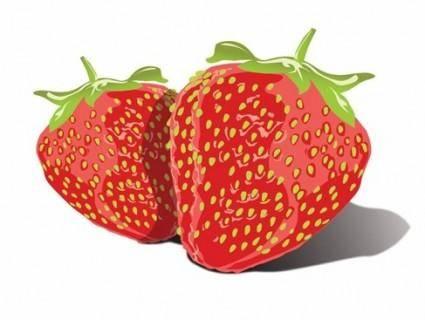 free vector Free Vector Tasty Strawberries