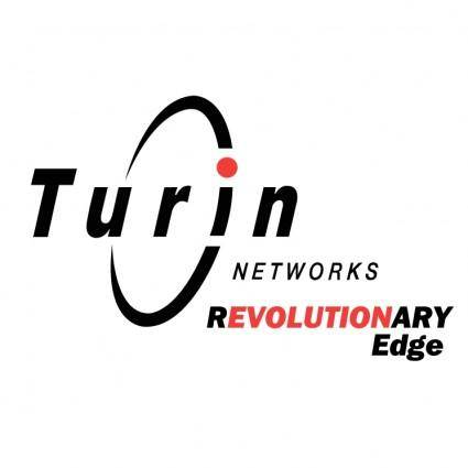 free vector Turin networks