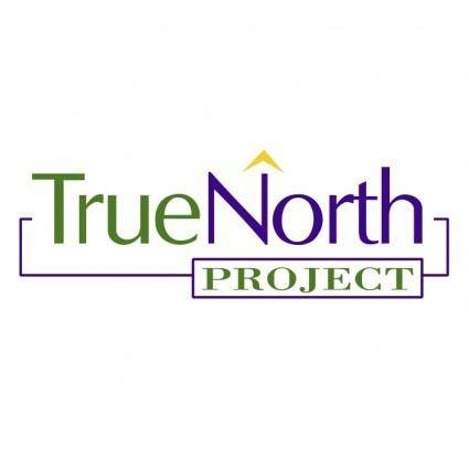 free vector True north project