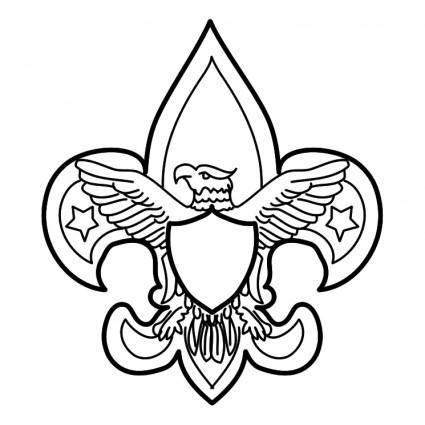 Scouting usa