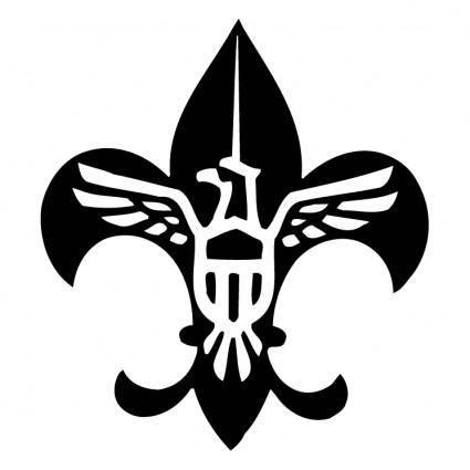 Scouting usa 0
