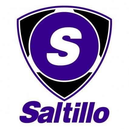 free vector Saltillo 0