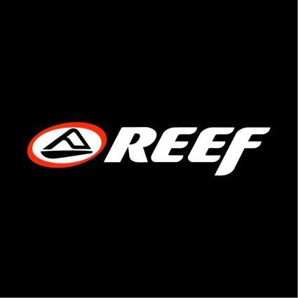 free vector Reef