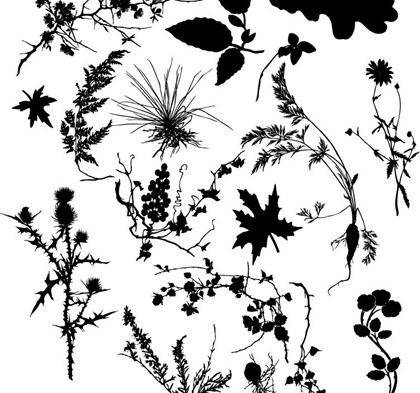 free vector Free Various Plant Silhouett Vector