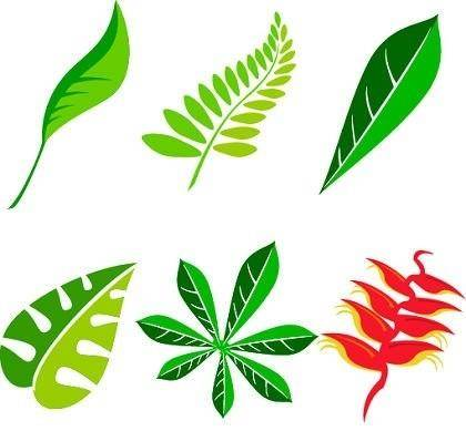 free vector Free Leaf Vector Art Package