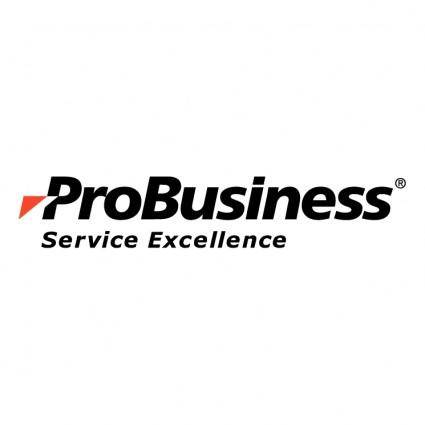 Probusiness services 0