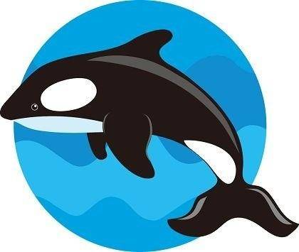 free vector Cute Whale Vector