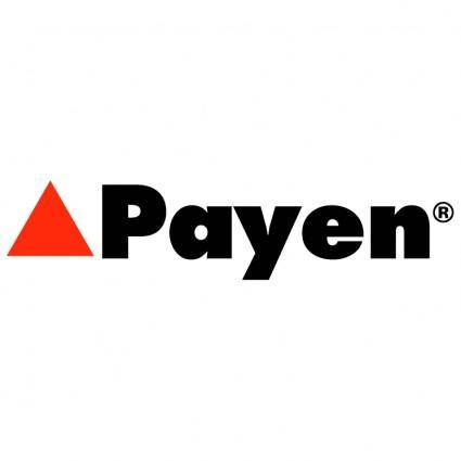 free vector Payen