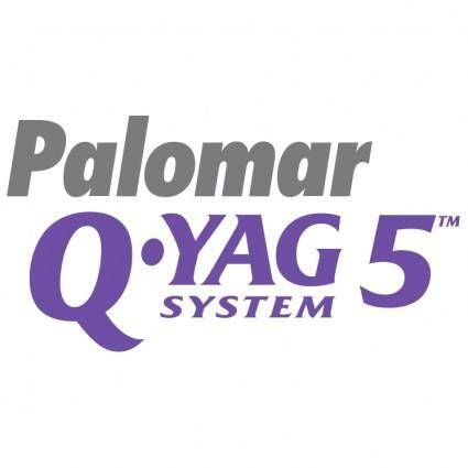 free vector Palomar q yag 5 system