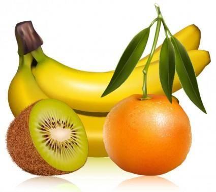 Fruit pictures 01 vector