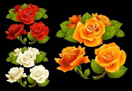 Realisitic Vector Roses