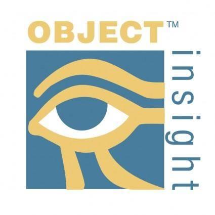 Object insight