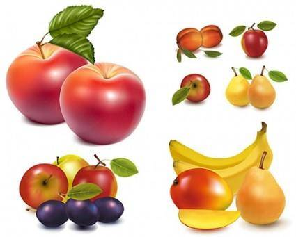 Realistic Vector Fruit