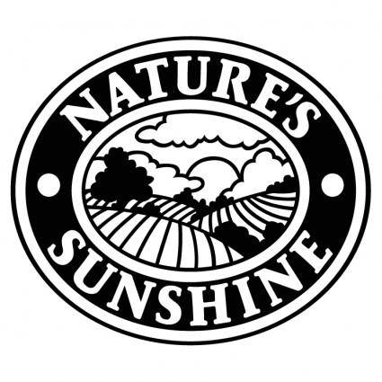 free vector Natures sunshine