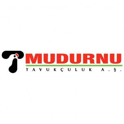 free vector Mudurnu