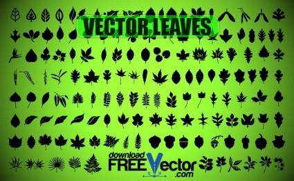 free vector Vector Leaves
