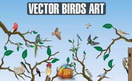Vector Birds Art