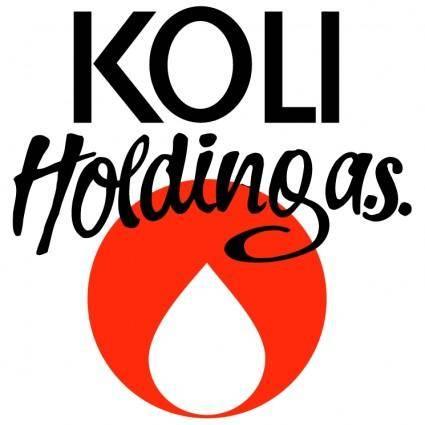 Koli holding
