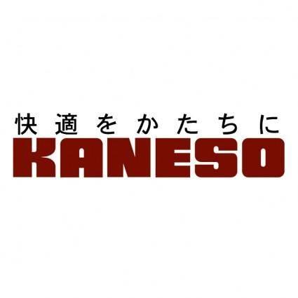 Kaneso
